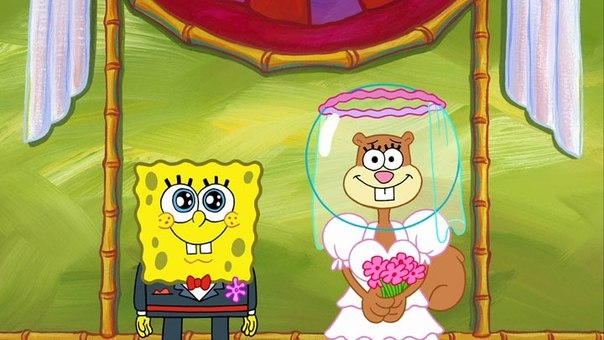 Sandy Cheeks  Love Interest Wiki  Fandom