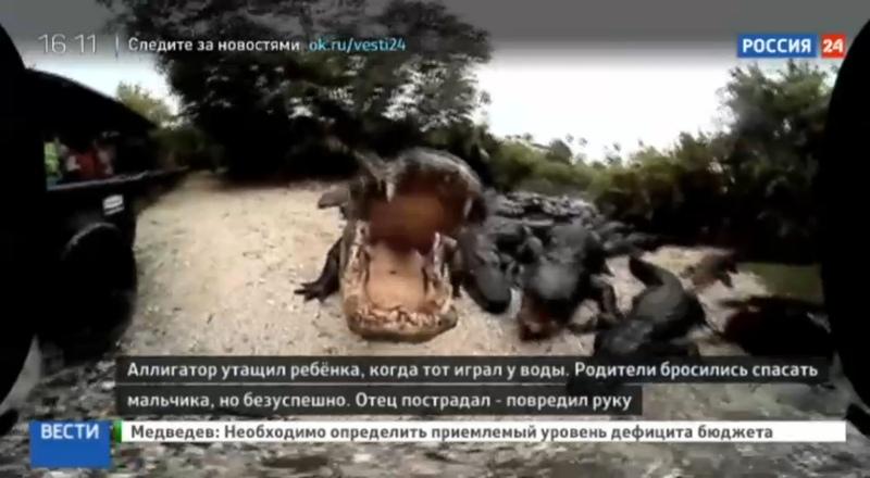 Новости на Россия 24 • Трагедия в парке Уолт Дисней: отец не смог отбить сына у крокодила