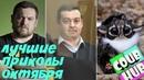 Смешные видео приколы COUB 30 Коуб Cube Октябрь 2018 Эрик Давидыч Лучшие приколы CoubHUB