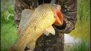 Рыбалка на крупного карася и его друзей в селе Эксперимент прикормка с чесноком. Вело - рыбалка.