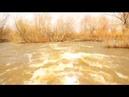 Дальний Восток Приморский край Весна в природе Пробуждение природы Красота