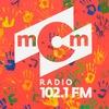РАДИО мСм | RADIO mCm | Официальная страница
