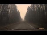 Путешествие в ад: видео поездки через горящую тайгу в Сибири