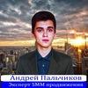 Андрей Пальчиков - Бизнес Молодость