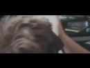 Warface Песня- Я - Читер! (Пародия на Imagine Dragons - Believer).mp4