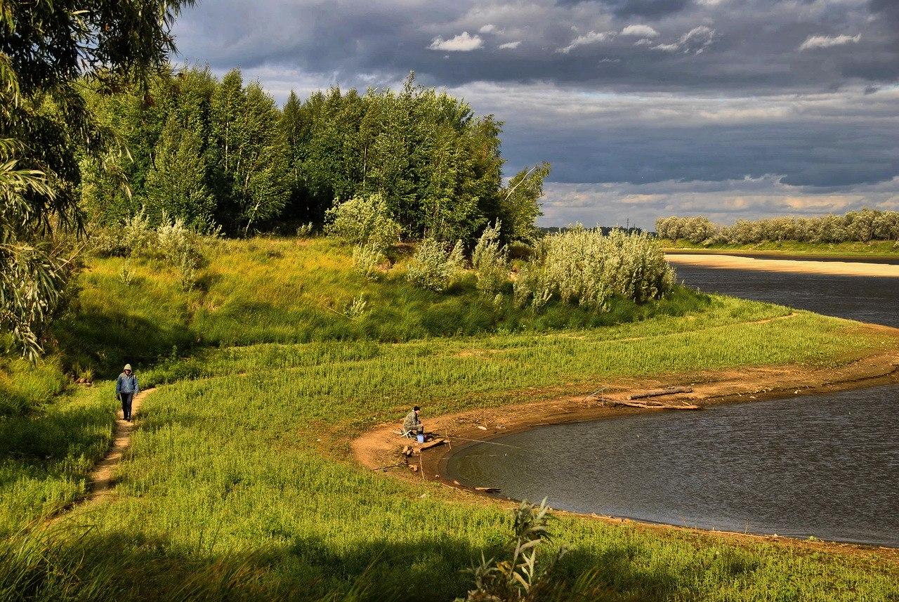Фото природа западной сибири летом 2