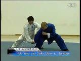 (Neutralize Techniques) 王战军 陈式太极拳实战技击&#20043