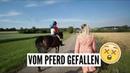 PFERD GEFALLEN - 10.32