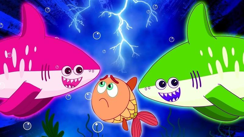 Песенка про акулу | АКУЛЕНОК - Музыка для детей