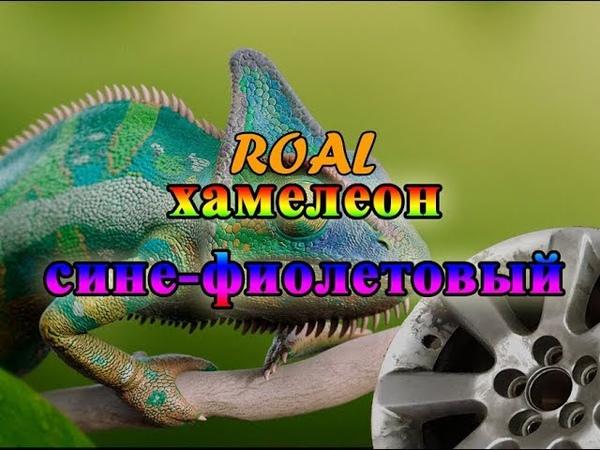 хамелеон сине фиолетовый