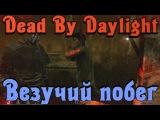 Dead by Daylight - ВЕЗУЧИЙ побег