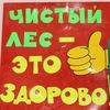 """Школьное Лесничество """"Кедр"""" г. Заречный"""