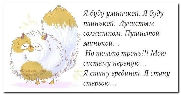 http://cs14115.vk.me/c7006/v7006299/16f24/uVu2OFNzkSA.jpg