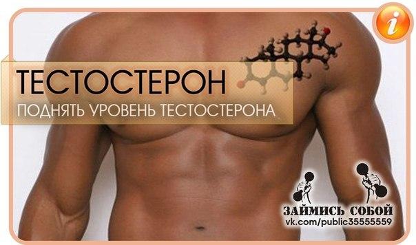 Повысить тестостерон у мужчин в домашних условиях 41