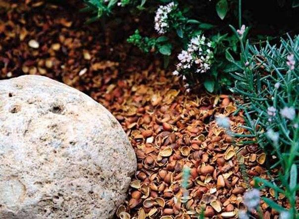 Уход за цветниками-мульча - скорлупа орехов