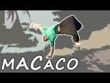 MACACO  Tutorial em Portugu