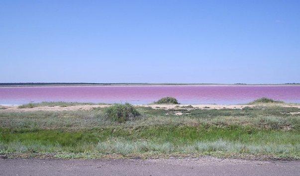 малиновое озеро сибирь