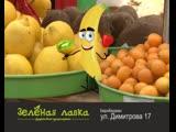Зеленая лавка частушка (convert-video-online.com) (1)(1)