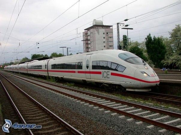 эконом класс поезда на воронеж