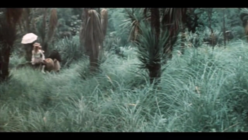 Жюль Верн. Капитан Пилигрима. (1986.г.)