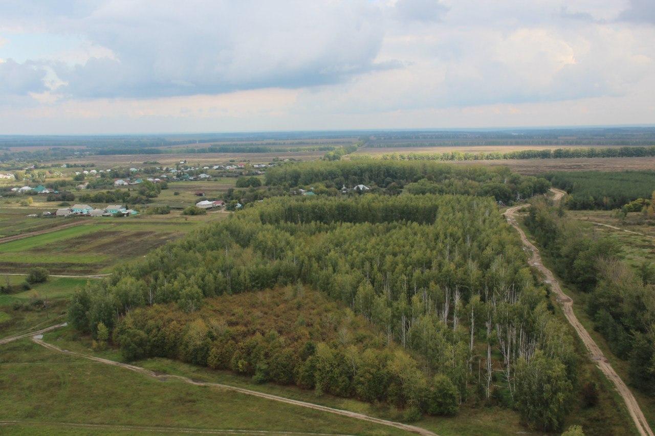 Дом в селе Казино Задонского района