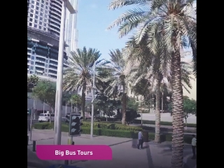 Метро и другие виды транспорта в Дубае