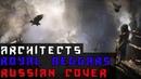 Architects - Royal Beggars На Русском (Русская версия by XROMOV Foxy Tail)