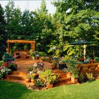 Садовые клумбы и цветники