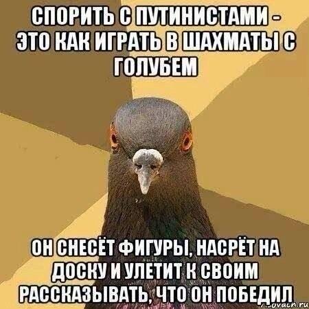pCEvAxWd2LI.jpg