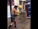 Хорхе Линарес готовится к возвращению в ринг