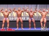 Mens Bodybuilding 85kg TOP6 2014 IFBB European Championships.