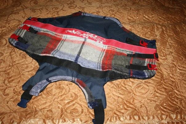 одежда для взрослых от производителя оптом