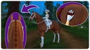 Star Stable Online от первого лица / Star Stable Online first person view