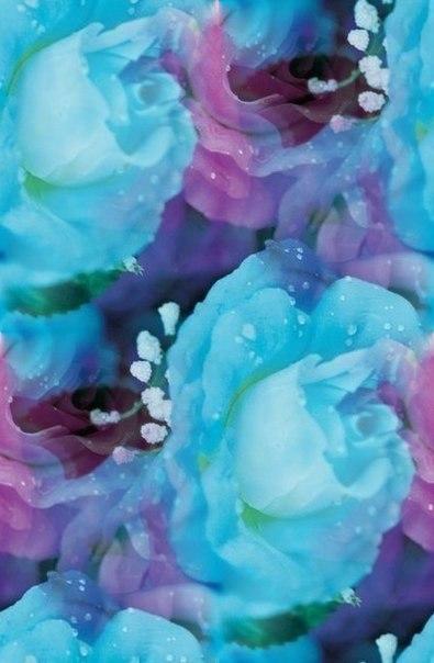 Цветочные и растительные фоны - Страница 2 8mmFJkpRwCE