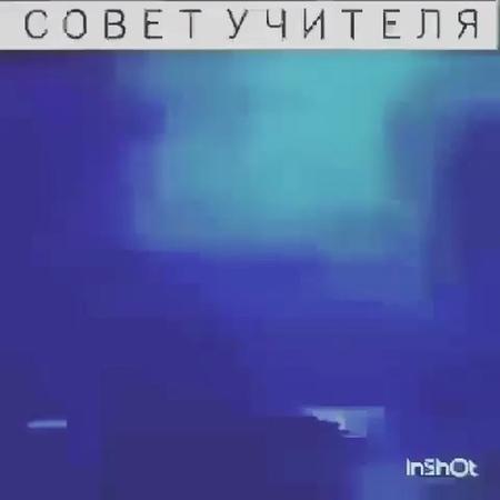 Vasilevskiy_vladimir video
