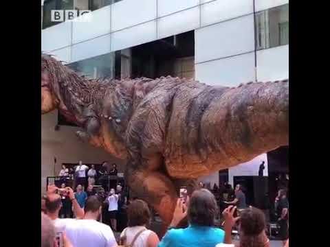 There's a giant, animatronic dinosaur roaming around BBC