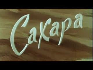 Сахара / 1963 / Грузинская студия хроникально-документальных и научно-популярных фильмов