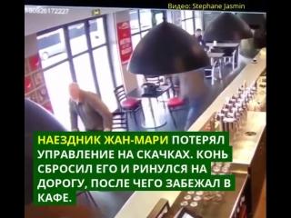 Во французском кафе лошадь устроила переполох