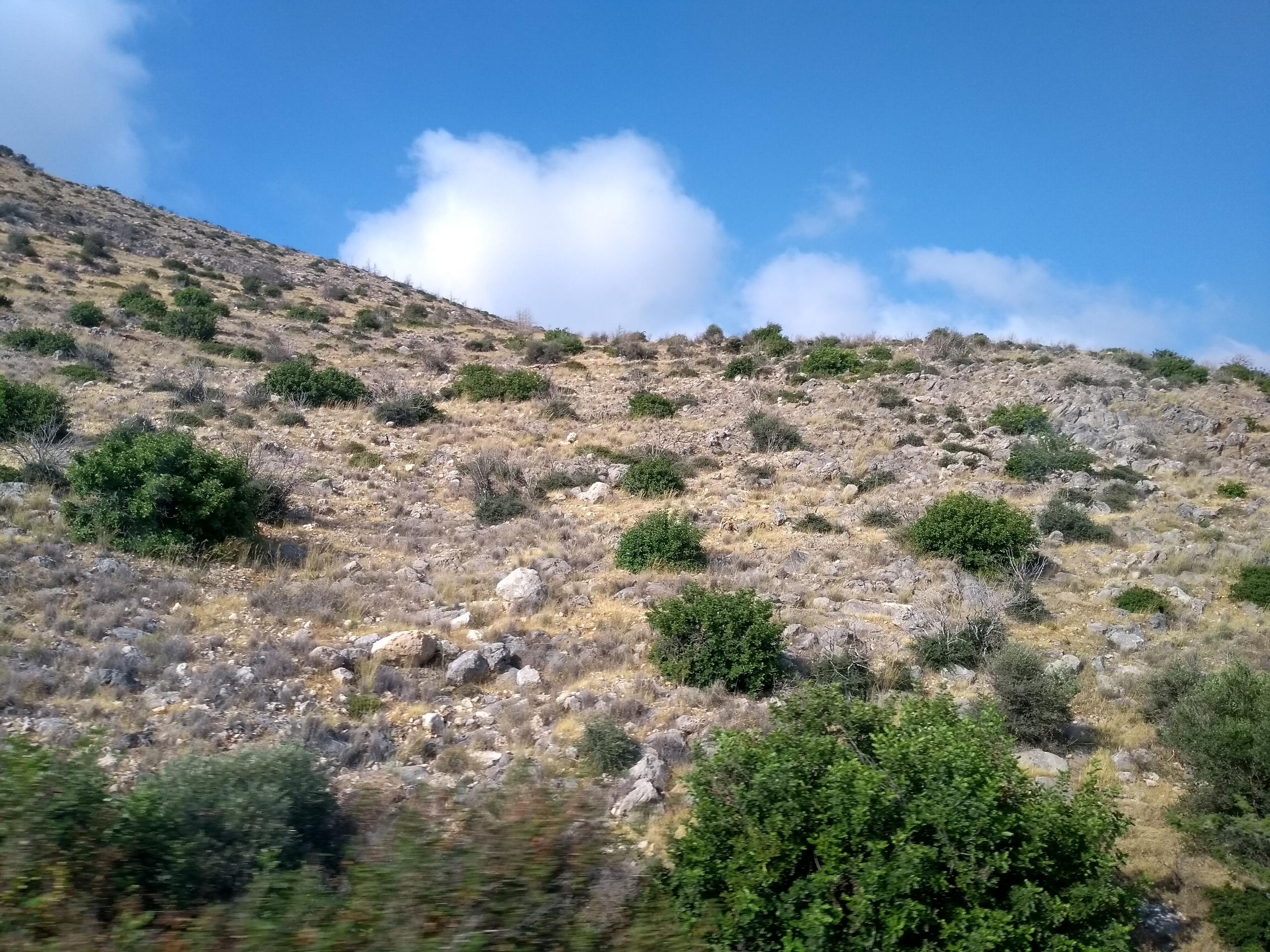 Елена Руденко (Валтея). Северный Кипр. Кериния и Фамагуста. (фото) - Страница 2 QFbbpayg3kA