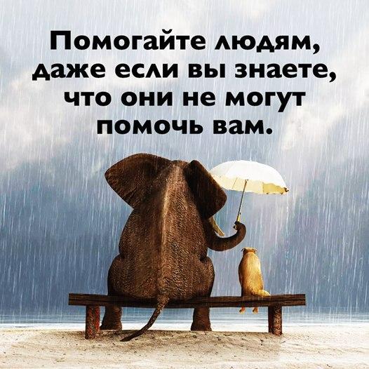 Фото №456245861 со страницы Юли Варламовой