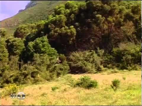Приключения Синдбада сериал-40