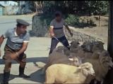 Э-ге-гей хали-гали! Цоб-цобе! Кавказская пленница 1966 г