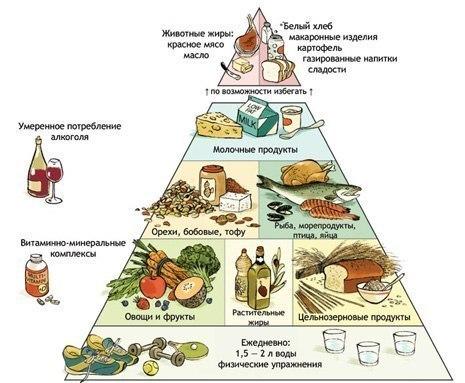схема правильного питания.