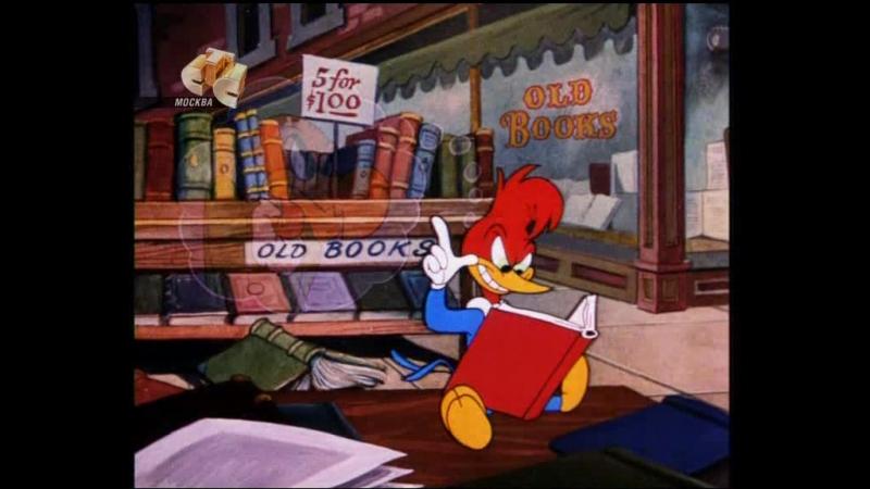 Woody Woodpecker - 051 - Hypnotic Hick