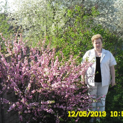 Ирина Аблажей, 22 ноября , Барановичи, id166234594