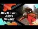 Animals Can Be Jerks! June 2018 FailArmy