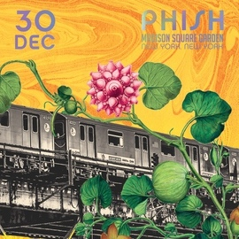 Phish альбом Phish: 12/30/2015 Madison Square Garden, New York, NY