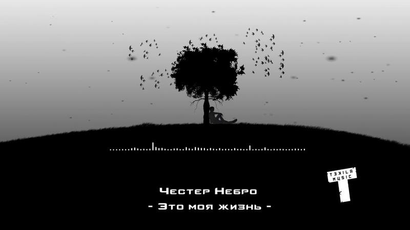 Честер Небро – Это моя жизнь ( Audio )