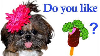 Do You Like Broccoli Ice Cream? | Nursery Rhymes Songs with Little Candy