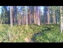 31-й км от Ленинградки в сторону Ковдора.